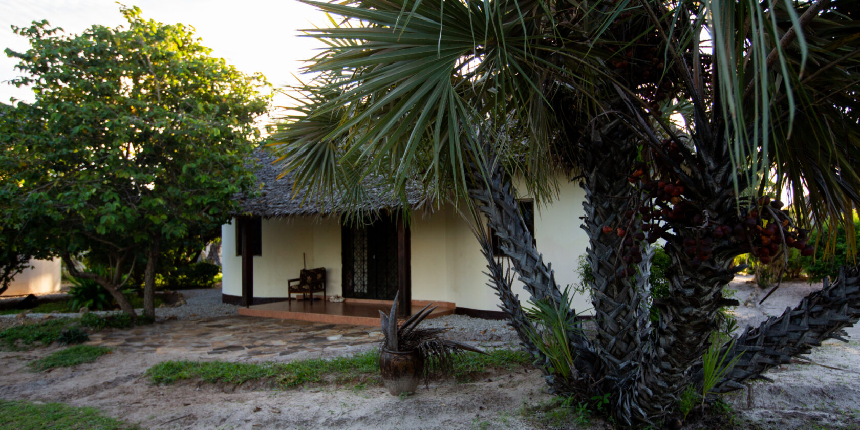One of the bungalows at TICC, with palms and trees around